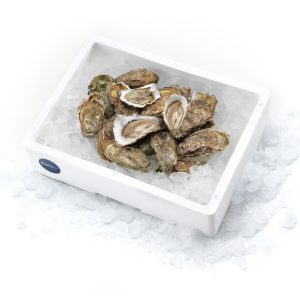 OYSTERS €30